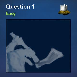 question01_403x403